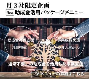New「最大270万円」獲得 助成金活用メニュー